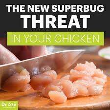 which food cause superbug and infections