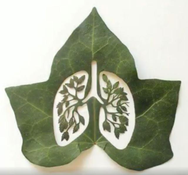 Fantastic and easy leaf art