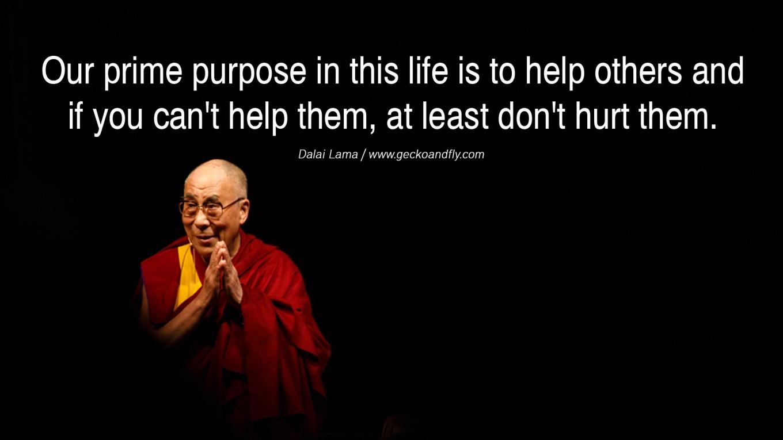 Dalai lama spreads peace. is peace maker